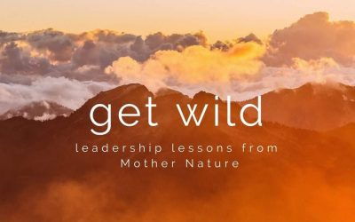 Get Wild: Leadership Lessons from Mother Nature