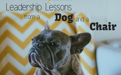 Leadership Lessons from a Chair and a Dog