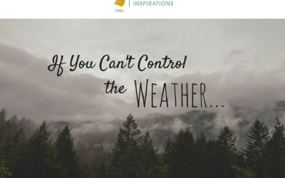 If You Can't Control the Weather