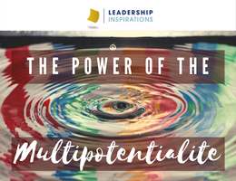 The Power of the Multipotentialite